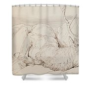 A Dead Stag Shower Curtain by Sir Edwin Landseer