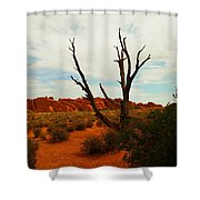 A Dead Tree Foreground A Maze Of Rocks Shower Curtain