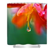 A Delicate Touch - Water Droplet - Orange Flower Shower Curtain