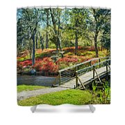 A Delightful Day Shower Curtain