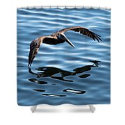 A Dip In The Pool Shower Curtain
