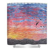 A Distant Time Shower Curtain