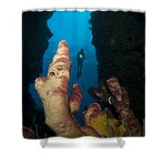 A Diver Looks Into A Cavern Shower Curtain by Steve Jones