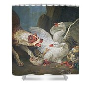 A Dog Attacking Geese, 1769 Oil On Canvas Shower Curtain