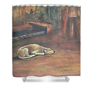 A Dog's Life. Shower Curtain