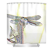 A Dragonfly In My Dreams Shower Curtain