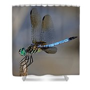 A Dragonfly Iv Shower Curtain