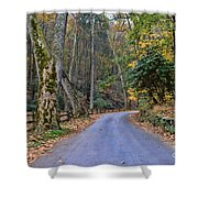 A Drive In The Country Shower Curtain by Paul Ward