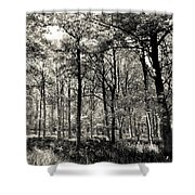 A English Forest Shower Curtain