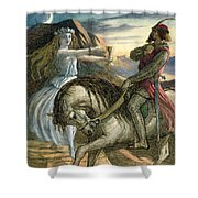 A Fairy And A Knight Shower Curtain