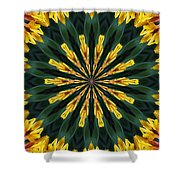 A Fanfare Of Flowers Shower Curtain