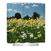 A Field Of Spring Shower Curtain