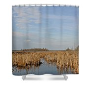 A Fine Place For Ducks Shower Curtain
