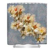 A Flourishing Cherry Branch Shower Curtain