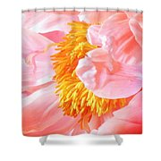 A Flower Effect Shower Curtain