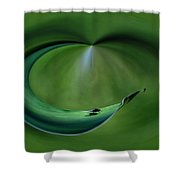 A Fly And His Shadow Polar View Shower Curtain