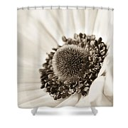 A Focus On The Details Shower Curtain by Caitlyn  Grasso