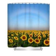 A Fog Bow Over The Colorado Sunflower Fields Shower Curtain