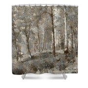 A Foggy Morning In November Shower Curtain