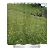 A Footpath Above The Cliff Shower Curtain