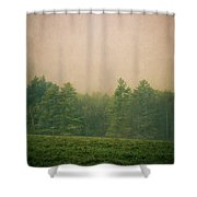 A Forest Shower Curtain