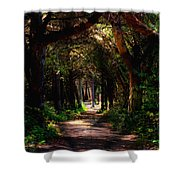 A Forest Path -dungeness Spit - Sequim Washington Shower Curtain