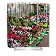 A French Flower Market Shower Curtain