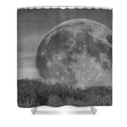 A Friend At Night Shower Curtain