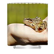 A Frog In The Hand Shower Curtain