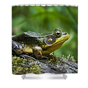 A Frog Is Forever Shower Curtain
