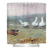 A Game Of Fox And Geese, 1868 Shower Curtain