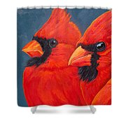 A Gathering Of Cardinals Shower Curtain