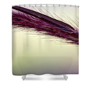 A Gentle Breeze Shower Curtain
