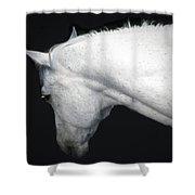 A Gentle Spirit Shower Curtain