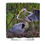 A Gift For The Nest Shower Curtain