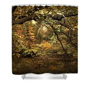 A Glimpse Of Autumn Shower Curtain