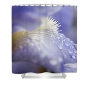 A Glimpse Of Beauty Shower Curtain