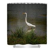 A Grassland Beauty Shower Curtain