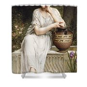 A Grecian Beauty Shower Curtain