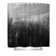 A Grey Point Of View Shower Curtain