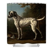 A Grey Spotted Hound Shower Curtain