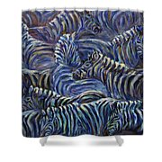 A Group Of Zebras Shower Curtain