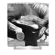 A Hard To Reach Itch Bw Shower Curtain