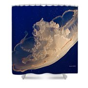 A Hat Never To Be Worn  Shower Curtain by Angela A Stanton