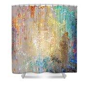 A Heart So Big - Custom Version 2 - Abstract Art Shower Curtain