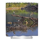 A Hedge Of Heron Shower Curtain