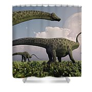 A Herd Of Diplodocus Sauropod Dinosaurs Shower Curtain