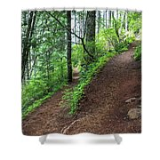 A Hiking Trail Goes Up Saddle Mountain Shower Curtain
