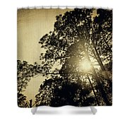 A Hint Of Sunshine Shower Curtain
