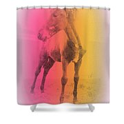A Horse Baby Is A Fragile Creature, Ready To Run For Its Life  Shower Curtain